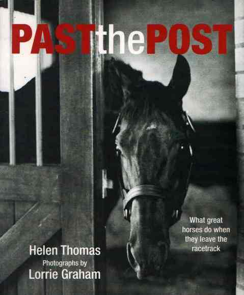 Past the Post: What great horses do when they leave the racetrack