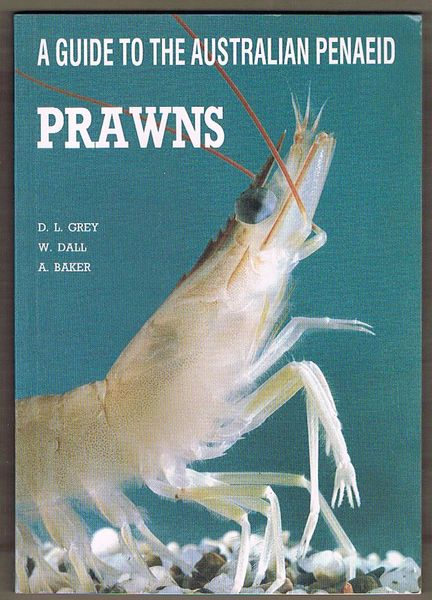 A Guide to the Australian Penaeid: Prawns
