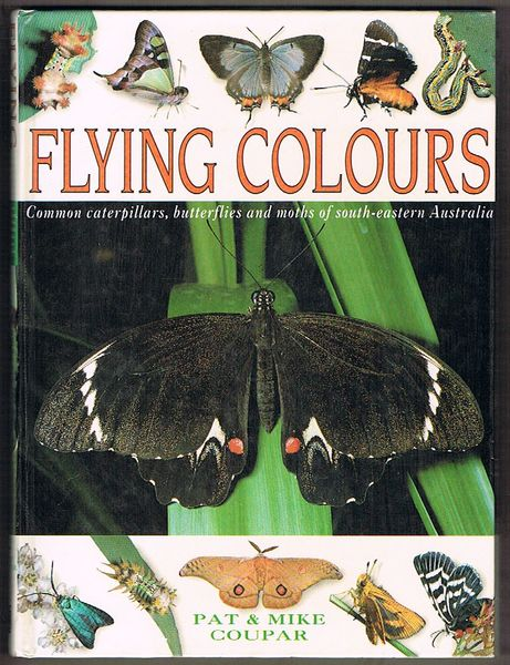 Flying Colours: Common Caterpillars, Butterflies and Moths of South-Eastern Australia